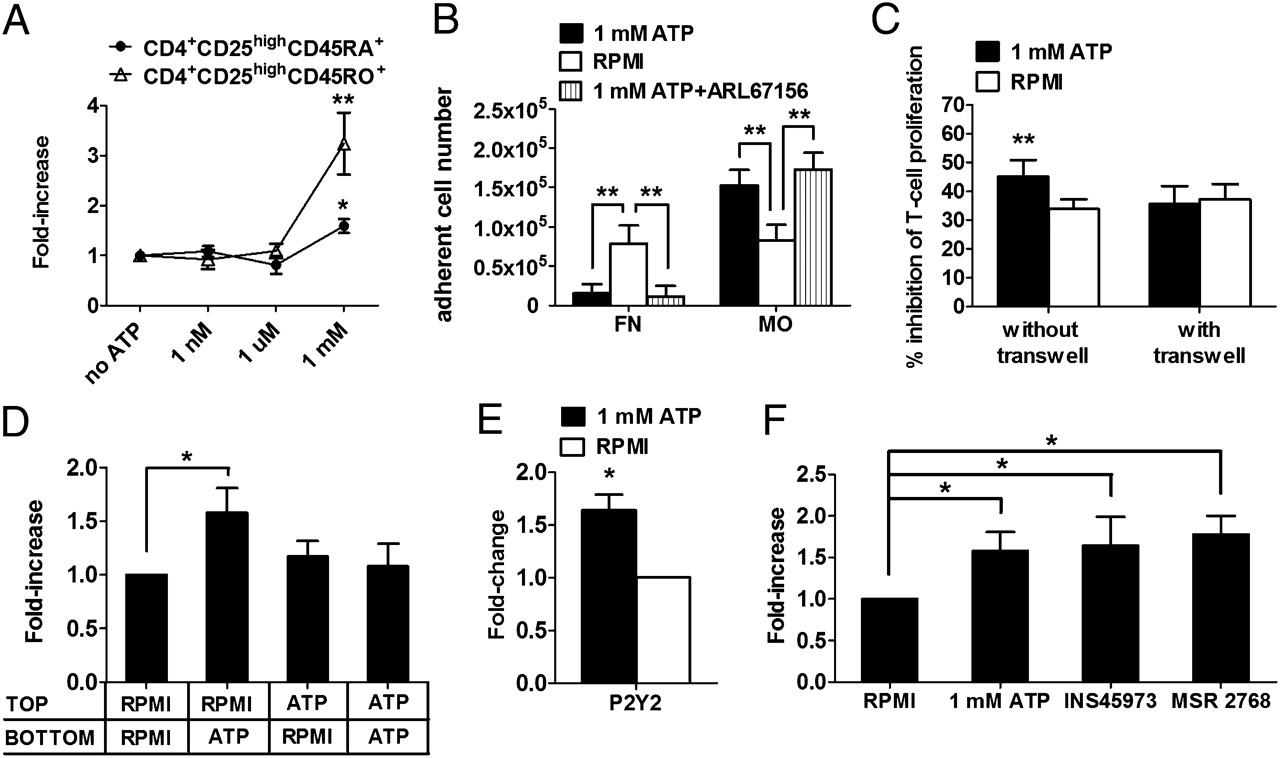 Extracellular atp exerts opposite effects on activated and download figure pooptronica