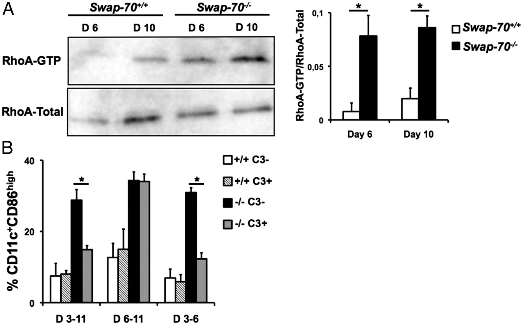 SWAP 70 Restricts Spontaneous Maturation of Dendritic Cells