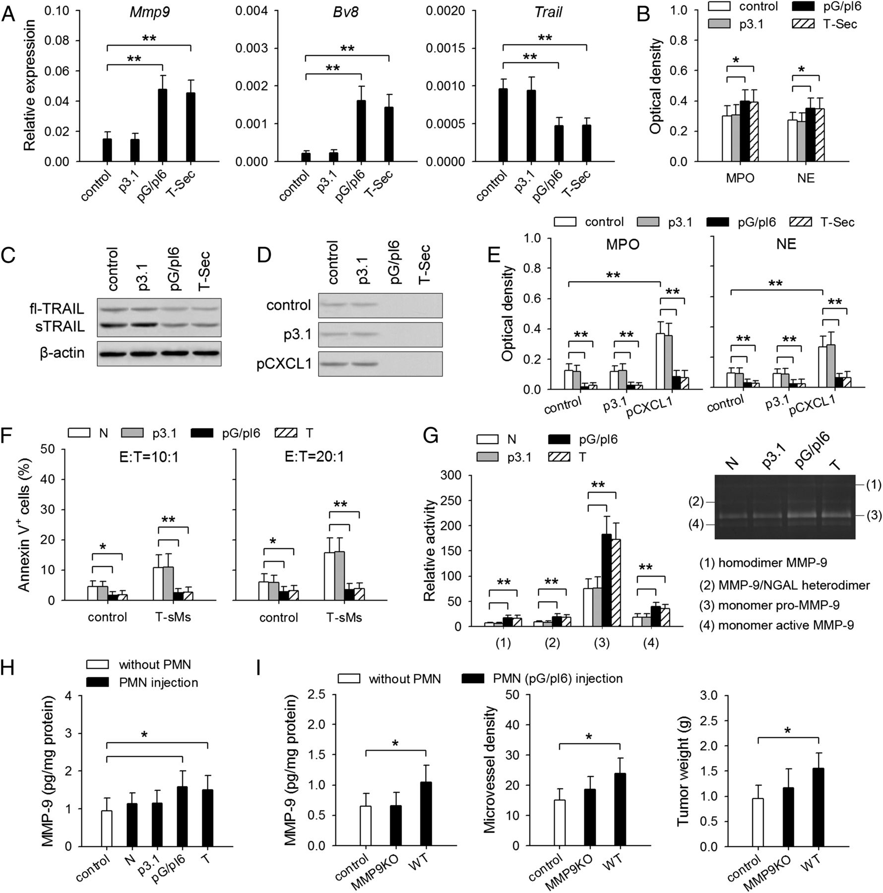 IL-6 Cooperates with G-CSF To Induce Protumor Function of ...