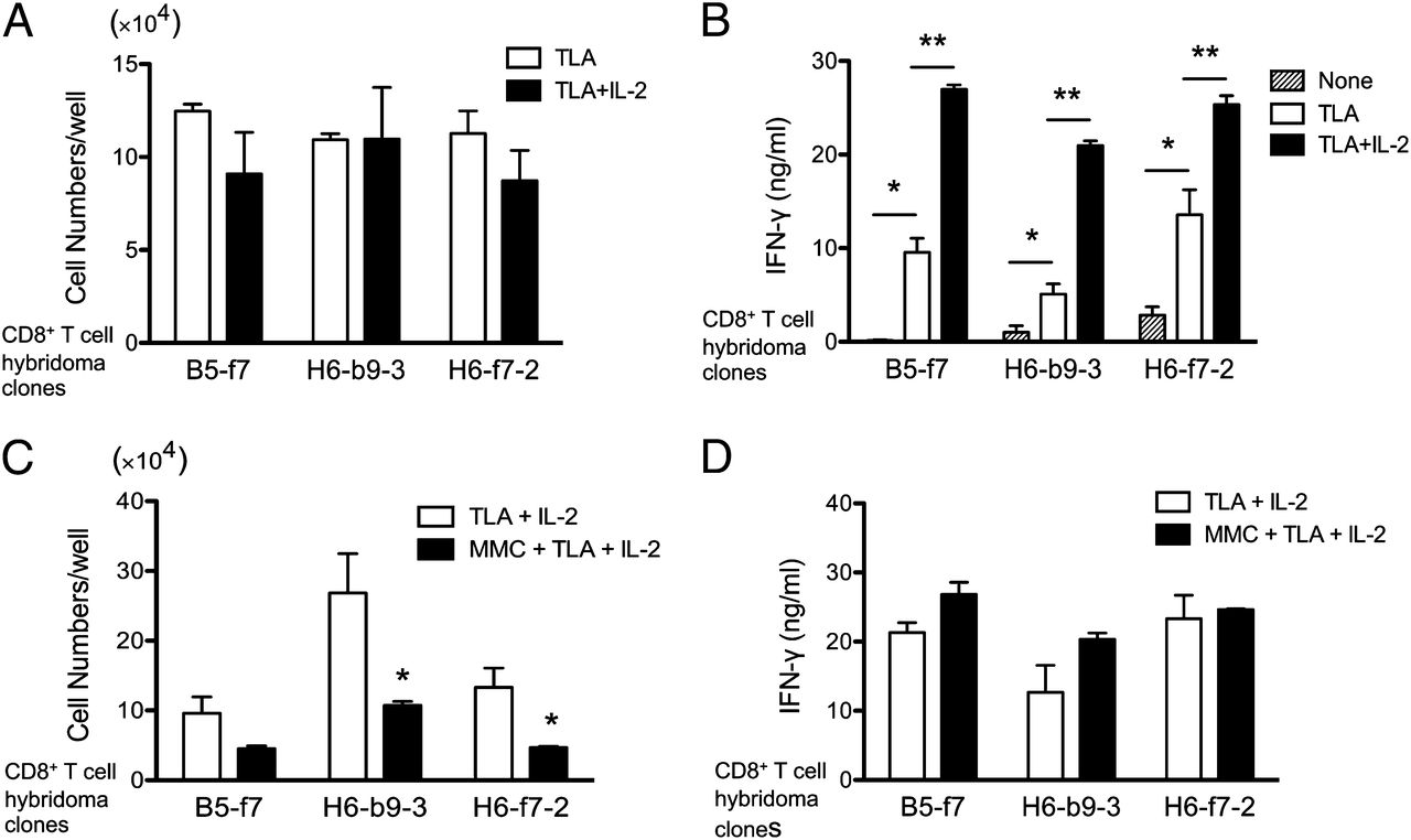 IL 2 Produced By CD8 Immune T Cells Can Augment Their IFN