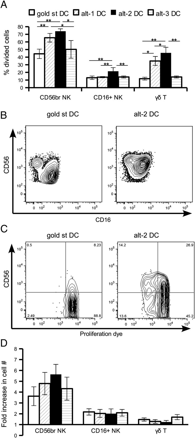 Fast Dendritic Cells Stimulated With Alternative Maturation Mixtures Labeled Animal Cell Diagram Related Keywords Suggestions Download Figure