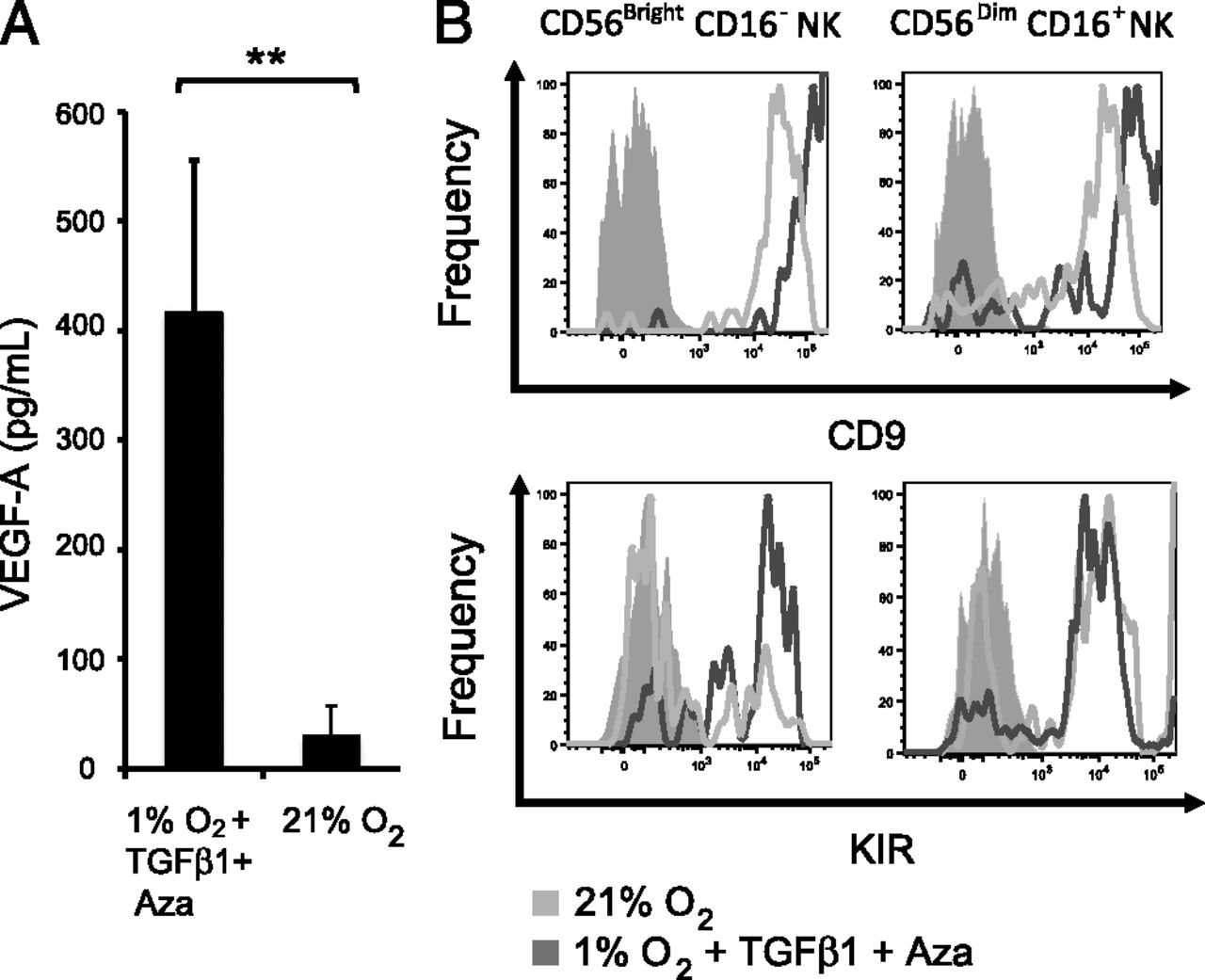Conversion of Peripheral Blood NK Cells to a Decidual NK
