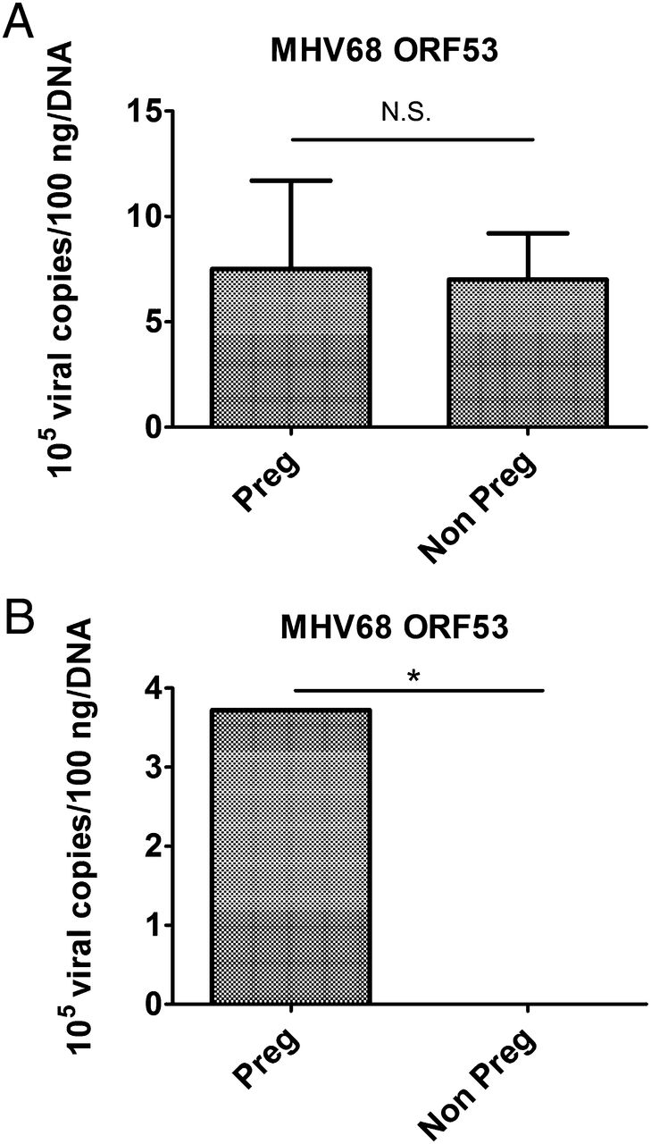 Viral infection of the pregnant cervix predisposes to ascending download figure ccuart Images