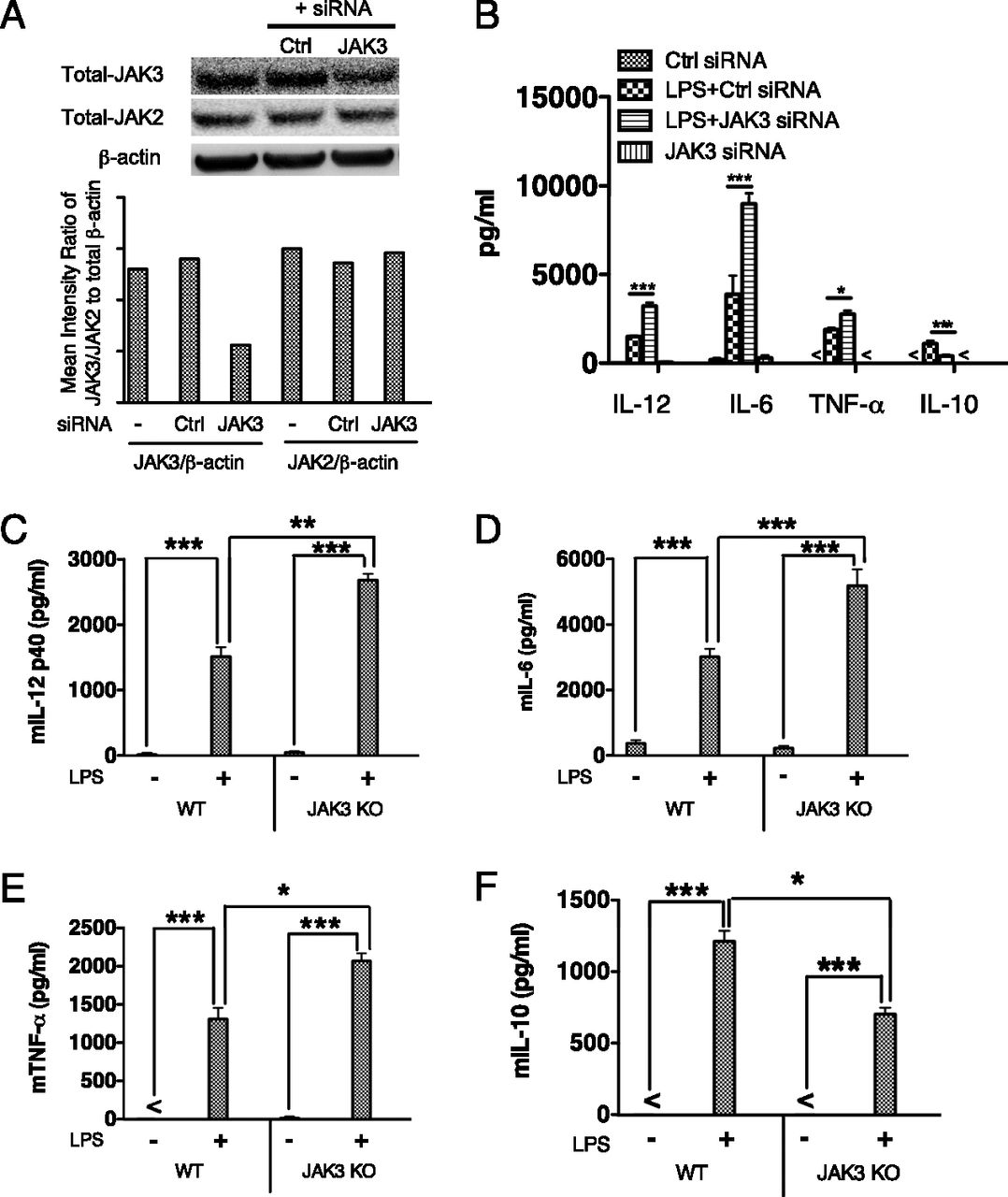 The Role of JAK-3 in Regulating TLR-Mediated Inflammatory Cytokine