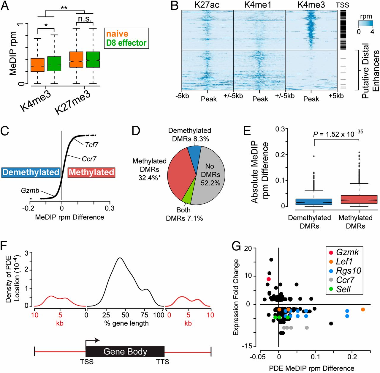 Global dna methylation remodeling accompanies cd8 t cell effector download figure malvernweather Choice Image