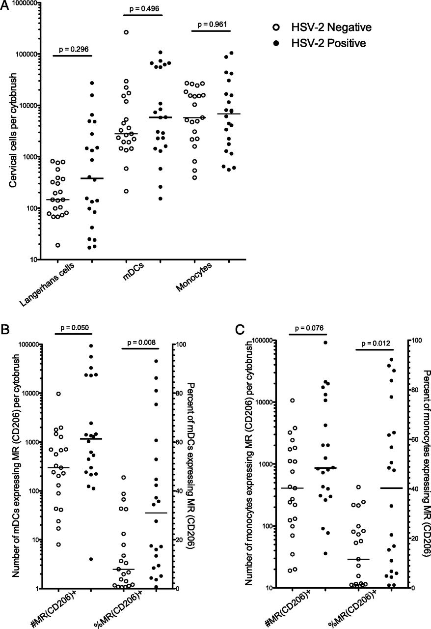 Impact of Asymptomatic Herpes Simplex Virus Type 2 Infection on