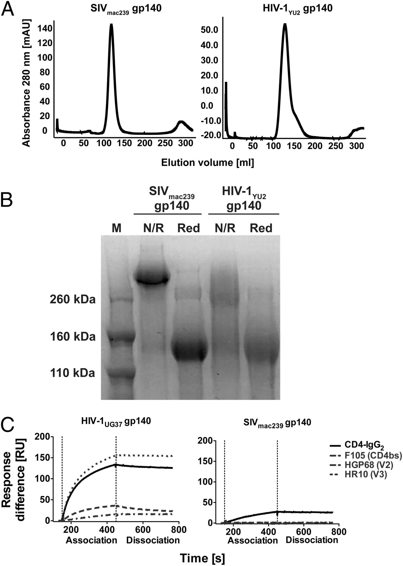 boosting of hiv 1 neutralizing antibody responses by a distally