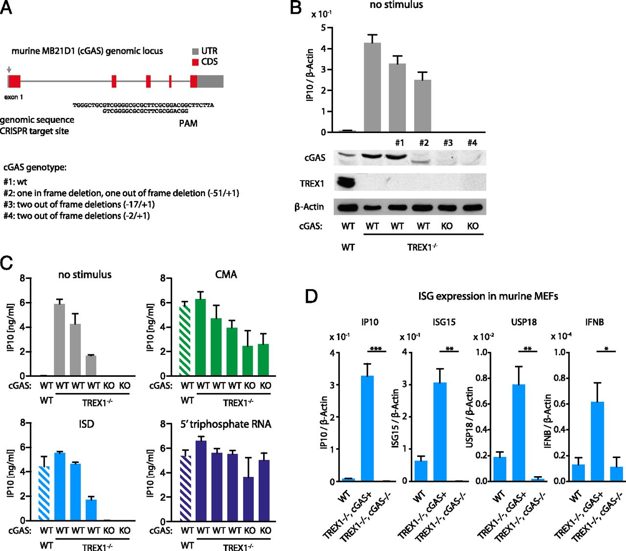 TREX1 Deficiency Triggers Cell-Autonomous Immunity in a cGAS ...