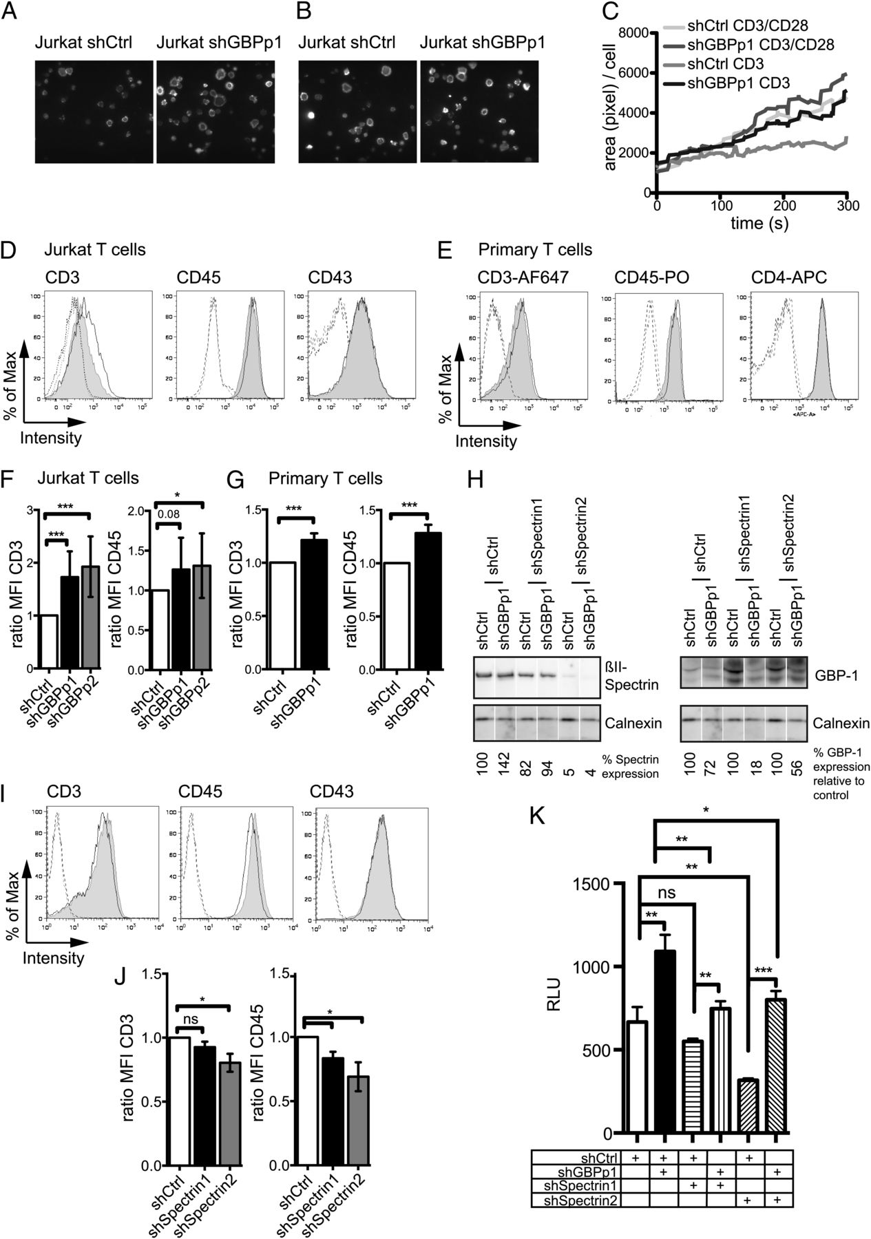 Guanylate Binding Protein 1mediated Interaction Of T Cell Antigen Pull Cord Time Delay Switch For Light Or Heat 1 Sec 2h Lag Download Figure