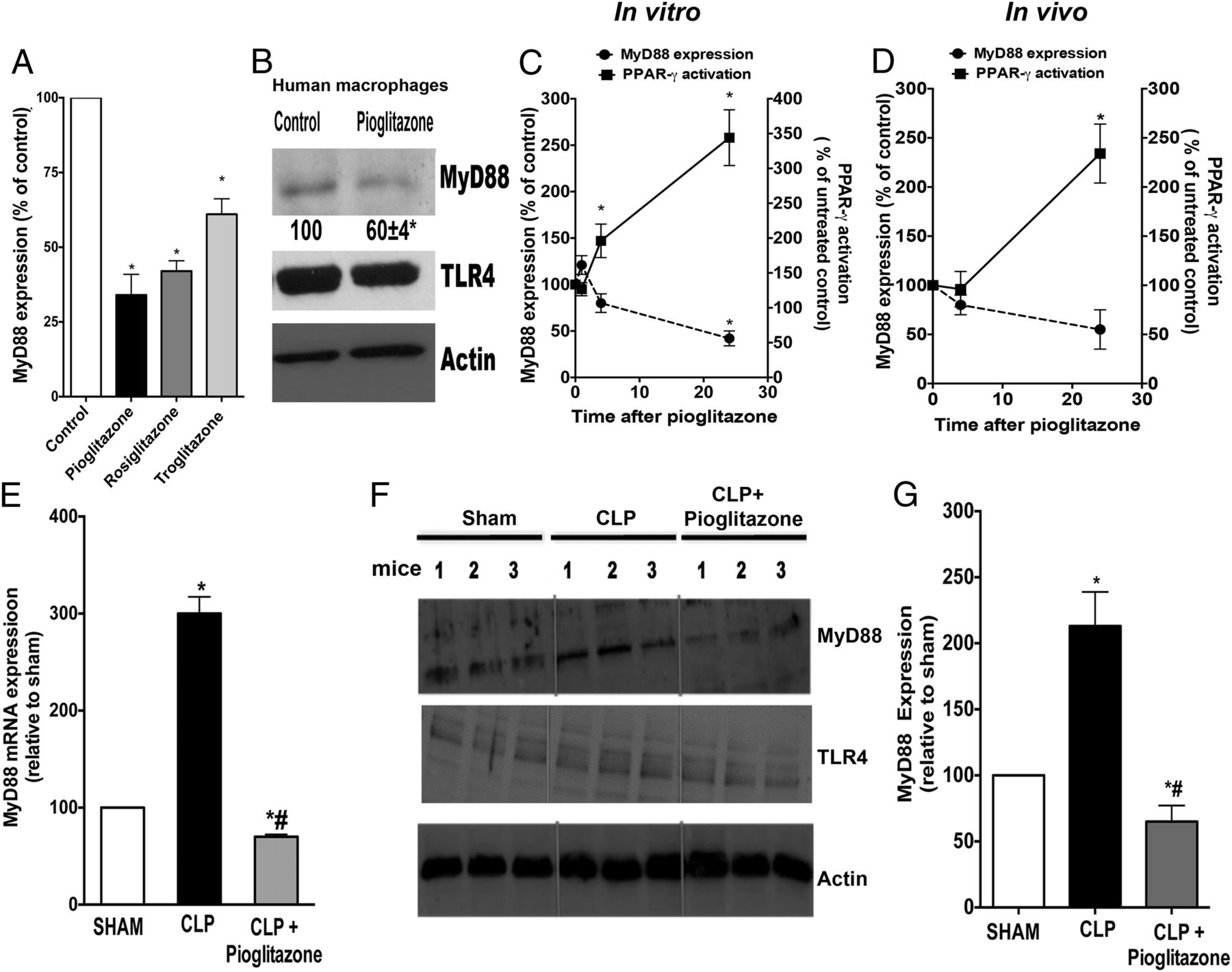PPAR-γ/IL-10 Axis Inhibits MyD88 Expression and Ameliorates