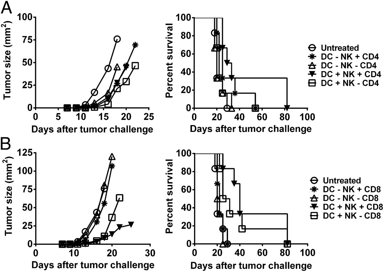 Nk Cells Are Required For Dendritic Cellbased Immunotherapy At The Download Free Dc Circuit Series 10 Figure