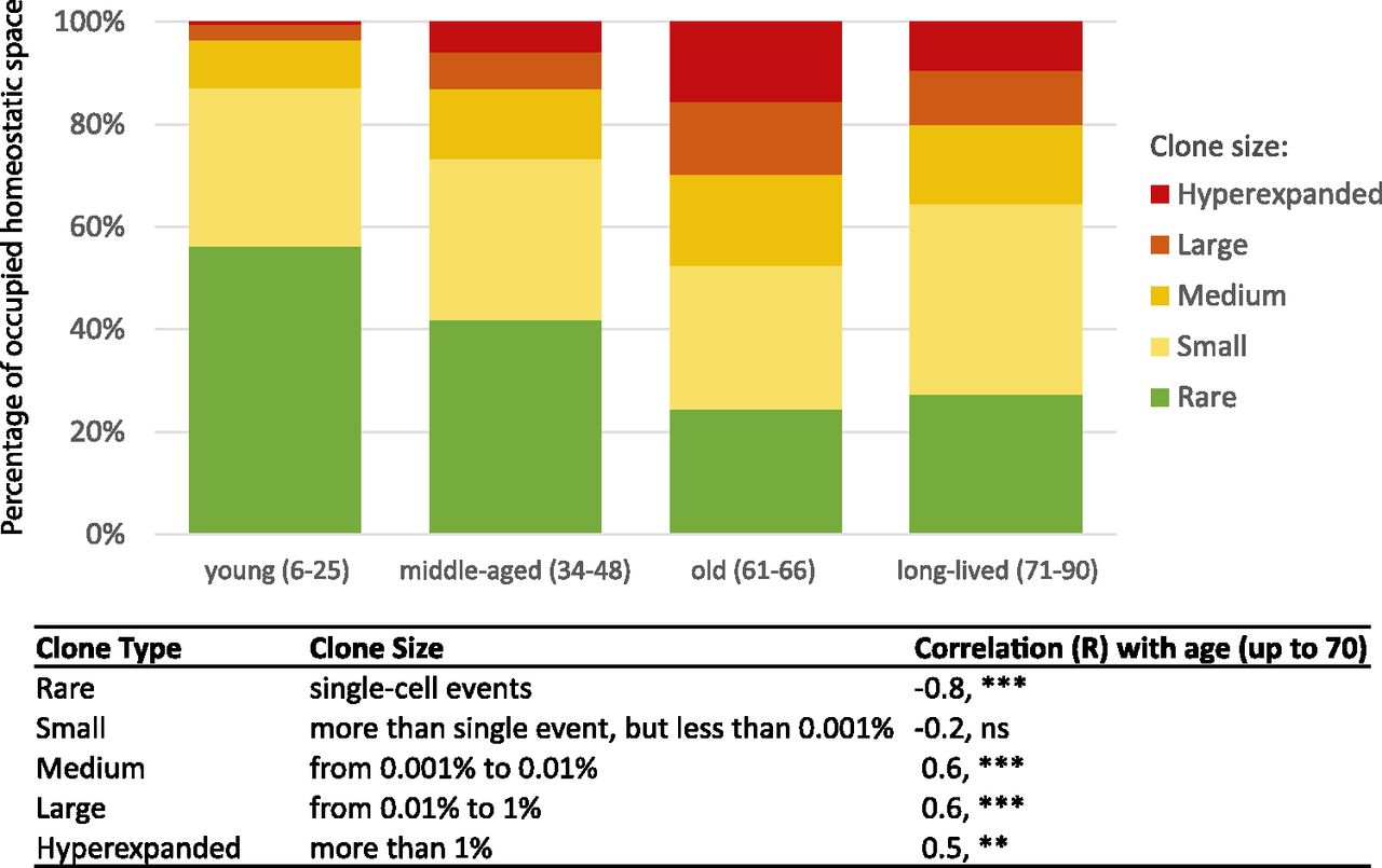 Age-Related Decrease in TCR Repertoire Diversity Measured with Deep ...
