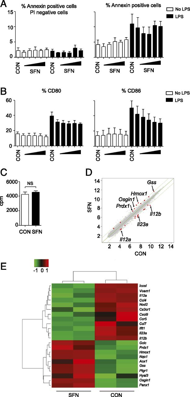 Sulforaphane Protects from T Cell–Mediated Autoimmune Disease by