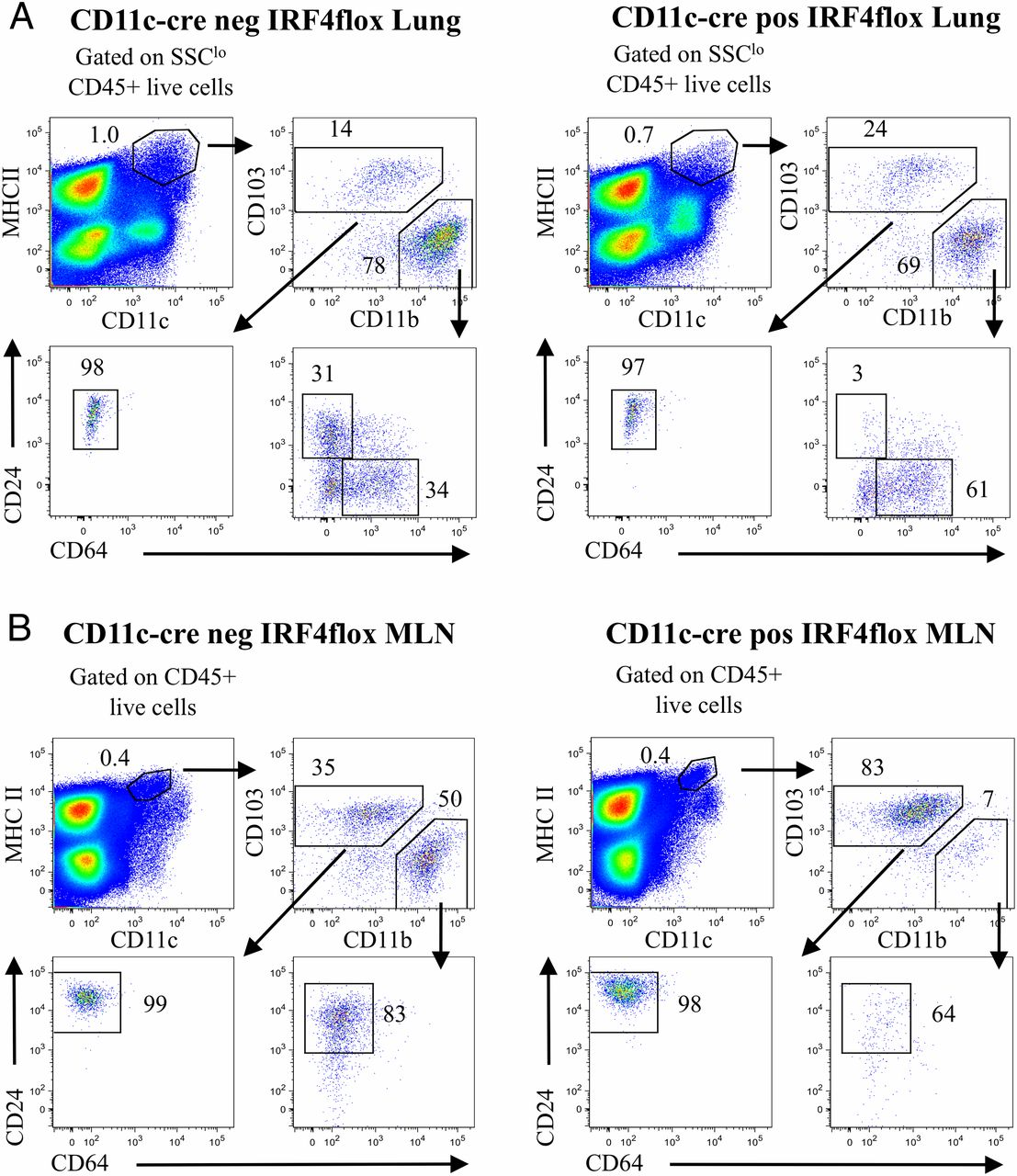 GM-CSF–Licensed CD11b+ Lung Dendritic Cells Orchestrate Th2