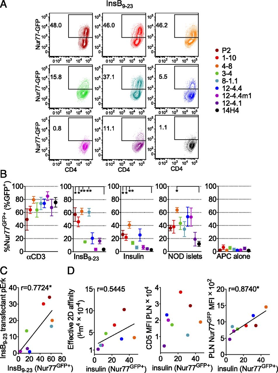 TCR Affinity and Tolerance Mechanisms Converge To Shape T