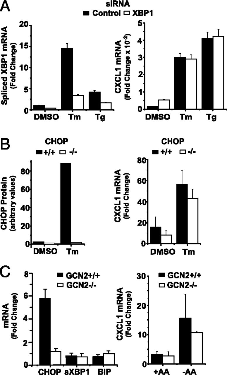 Cellular Stress Amplifies TLR3/4-Induced CXCL1/2 Gene