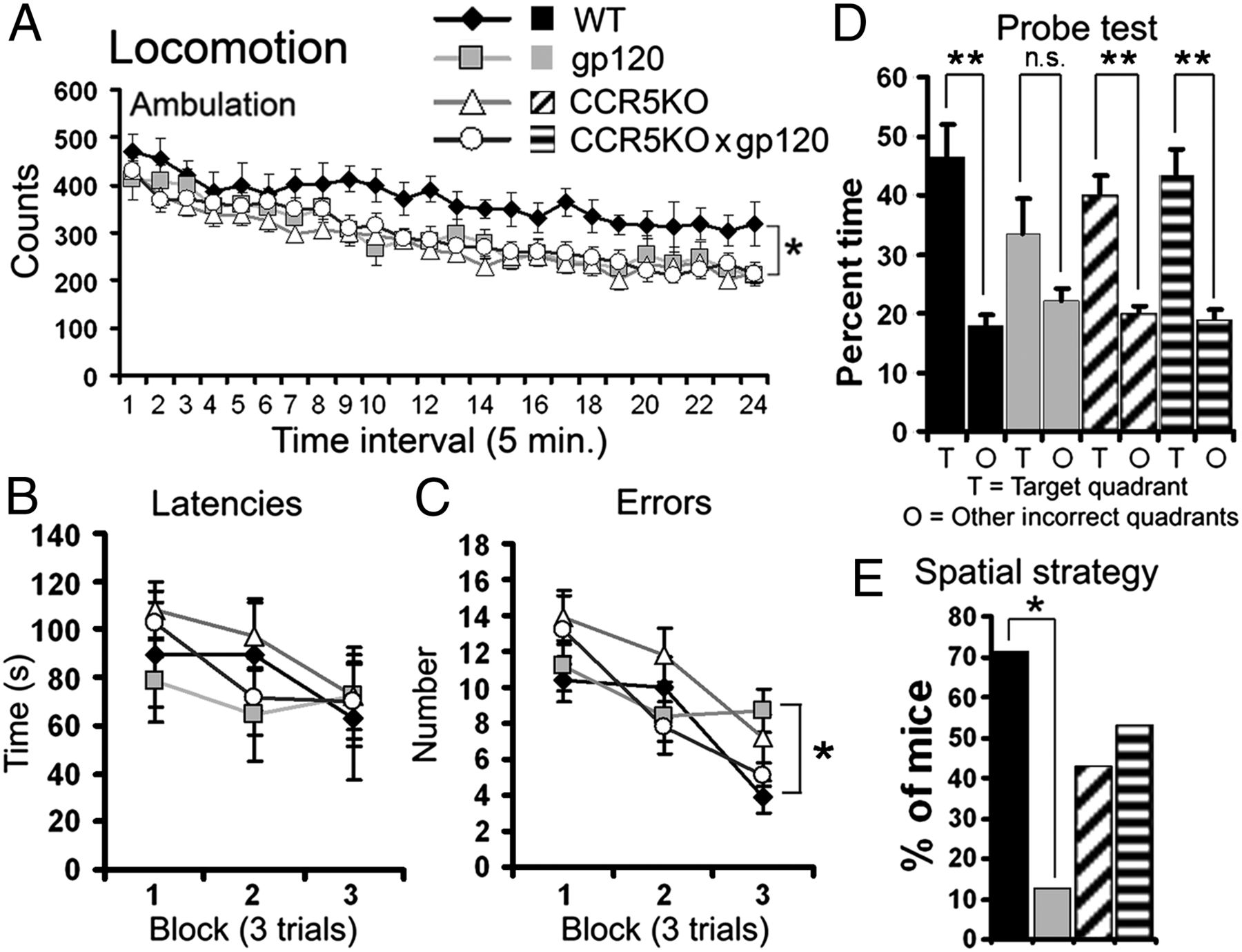 CCR5 Knockout Prevents Neuronal Injury and Behavioral