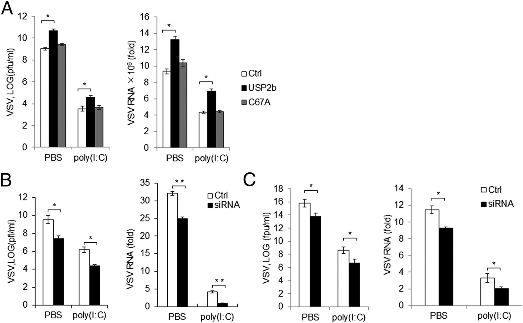 Ubiquitin-Specific Protease 2b Negatively Regulates IFN-β