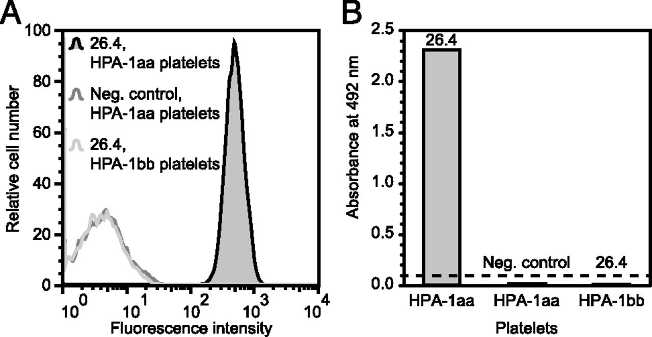 Characterization of a Human Platelet Antigen-1a–Specific