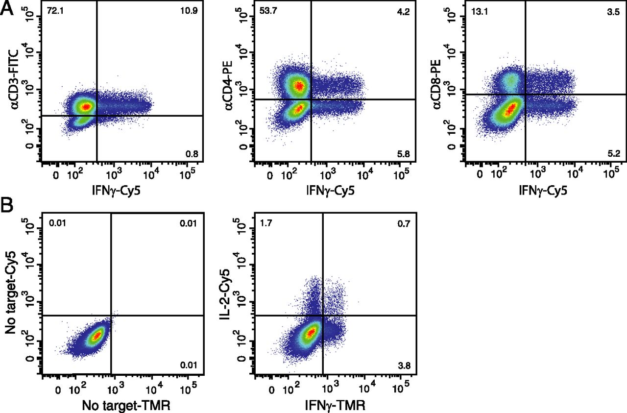 t cell stimulation with pma and ionomycin