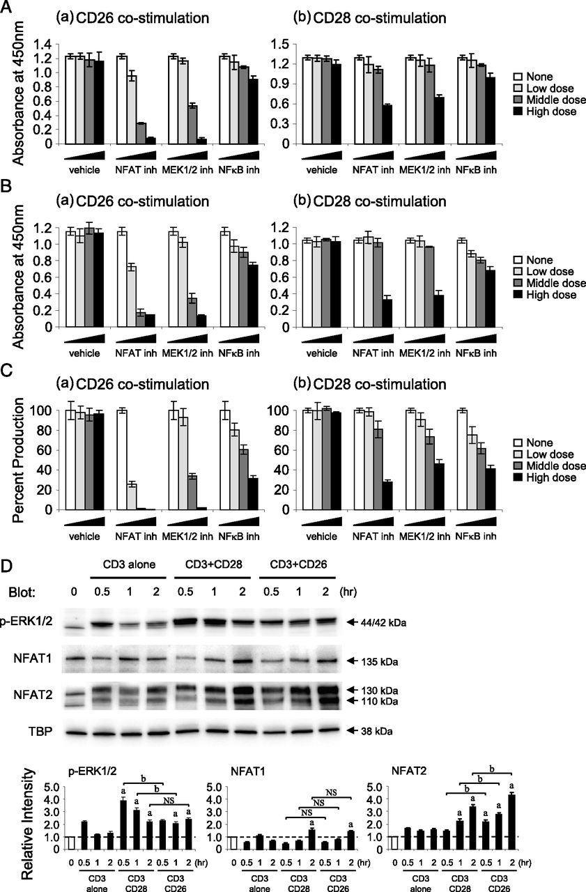 CD26-Mediated Induction of EGR2 and IL-10 as Potential