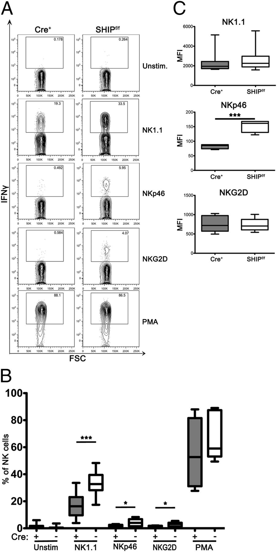 Ship1 Intrinsically Regulates Nk Cell Signaling And Education