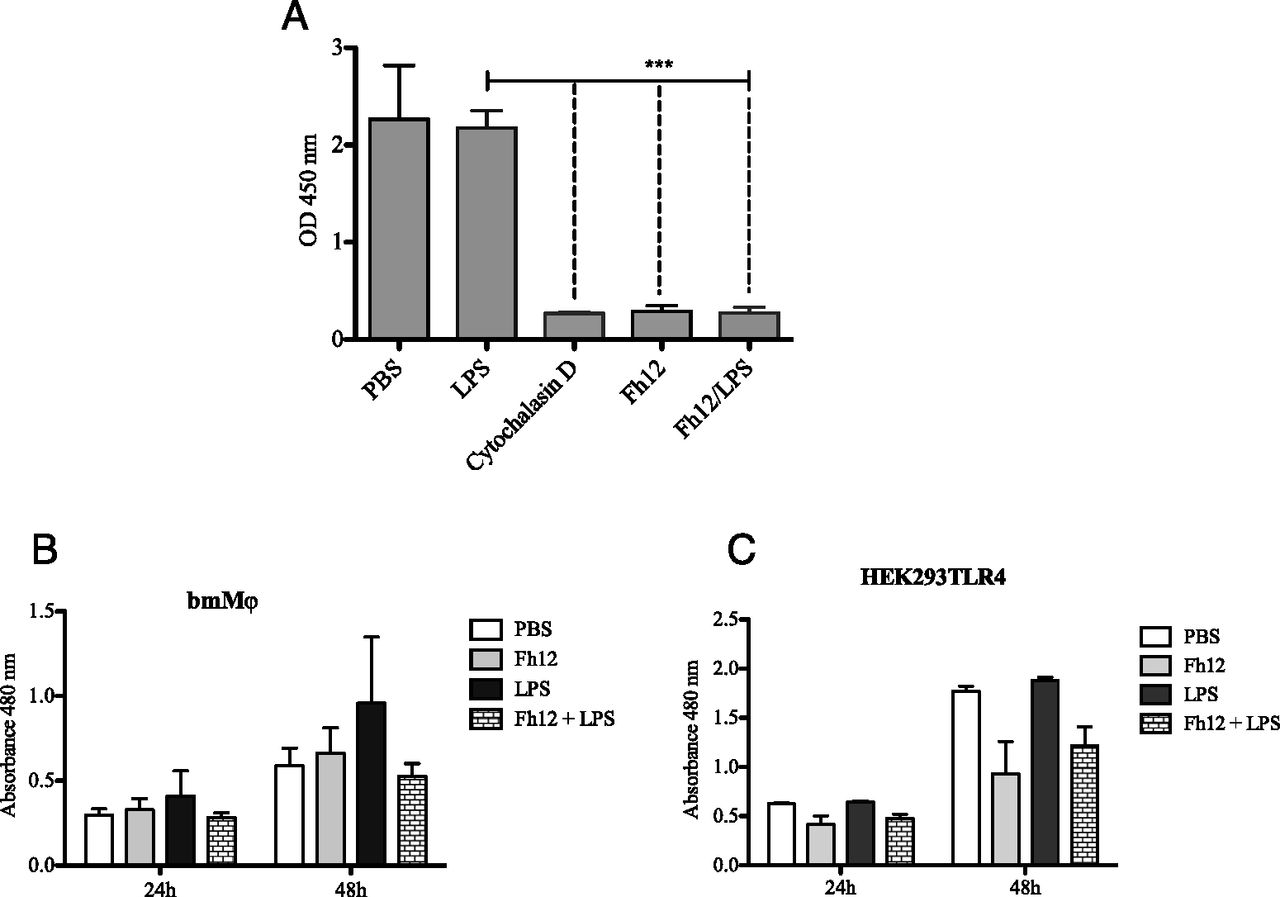 Fasciola hepatica fatty acid binding protein inhibits tlr4 download figure pooptronica Image collections