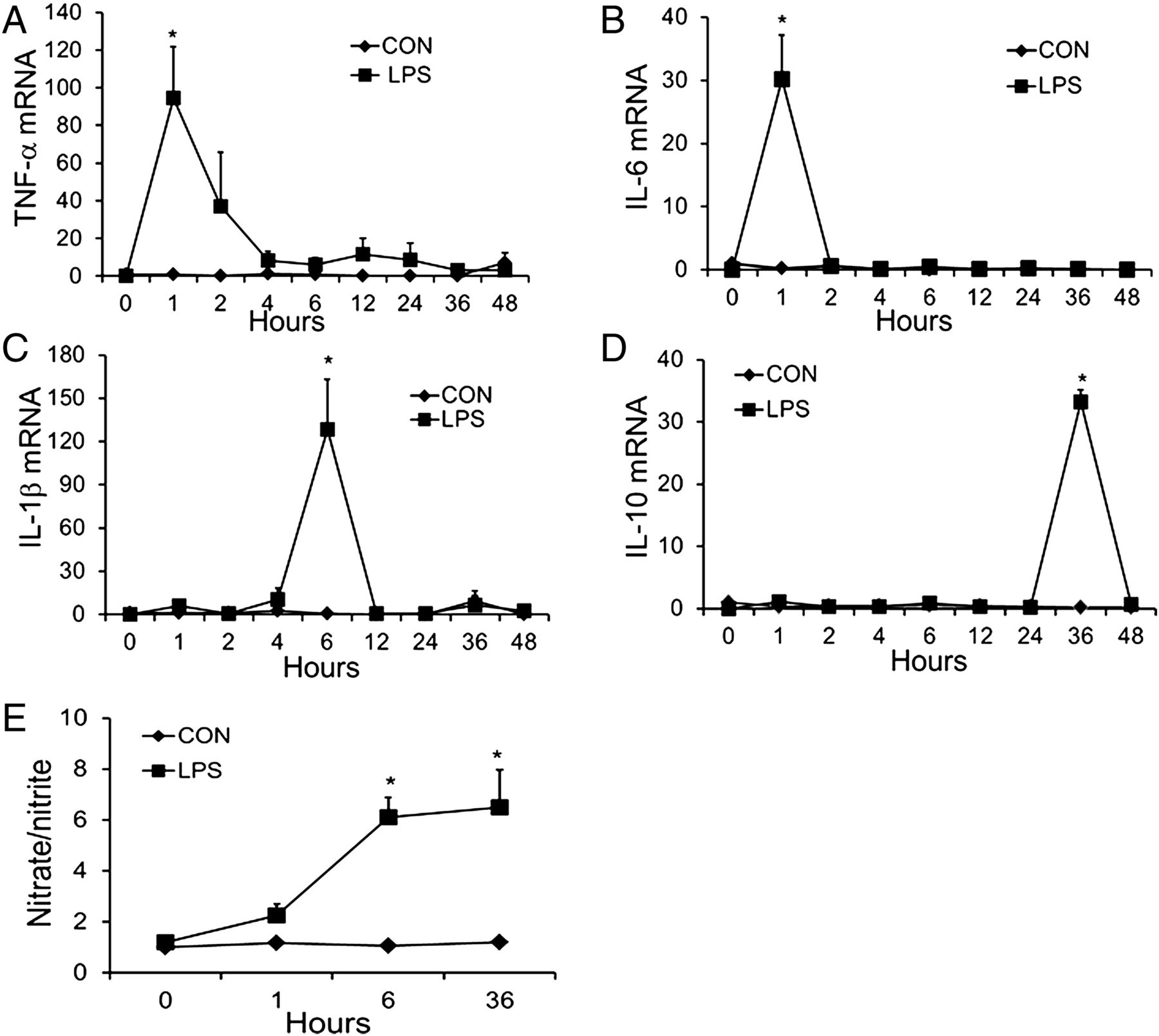 MicroRNA-26b Modulates the NF-κB Pathway in Alveolar Macrophages by