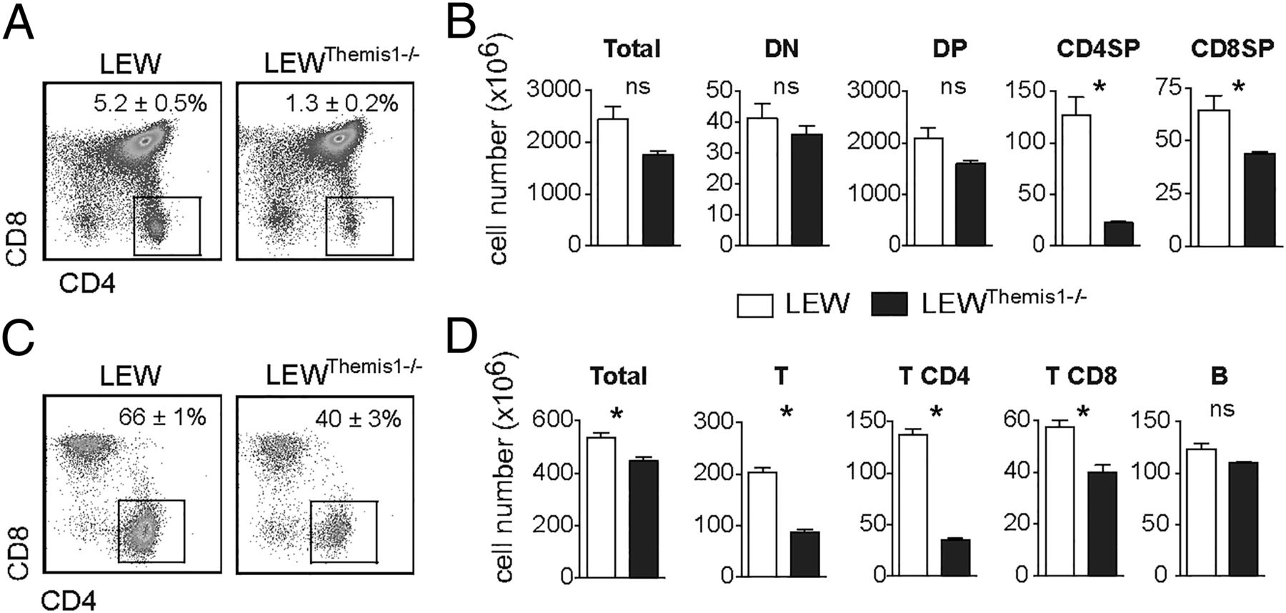 an epistatic interaction between themis1 and vav1 modulates