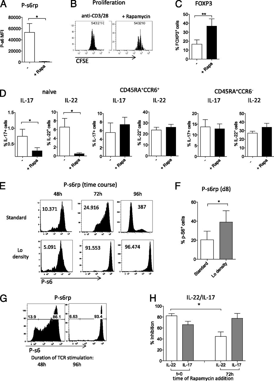 Signal Strength and Metabolic Requirements Control Cytokine