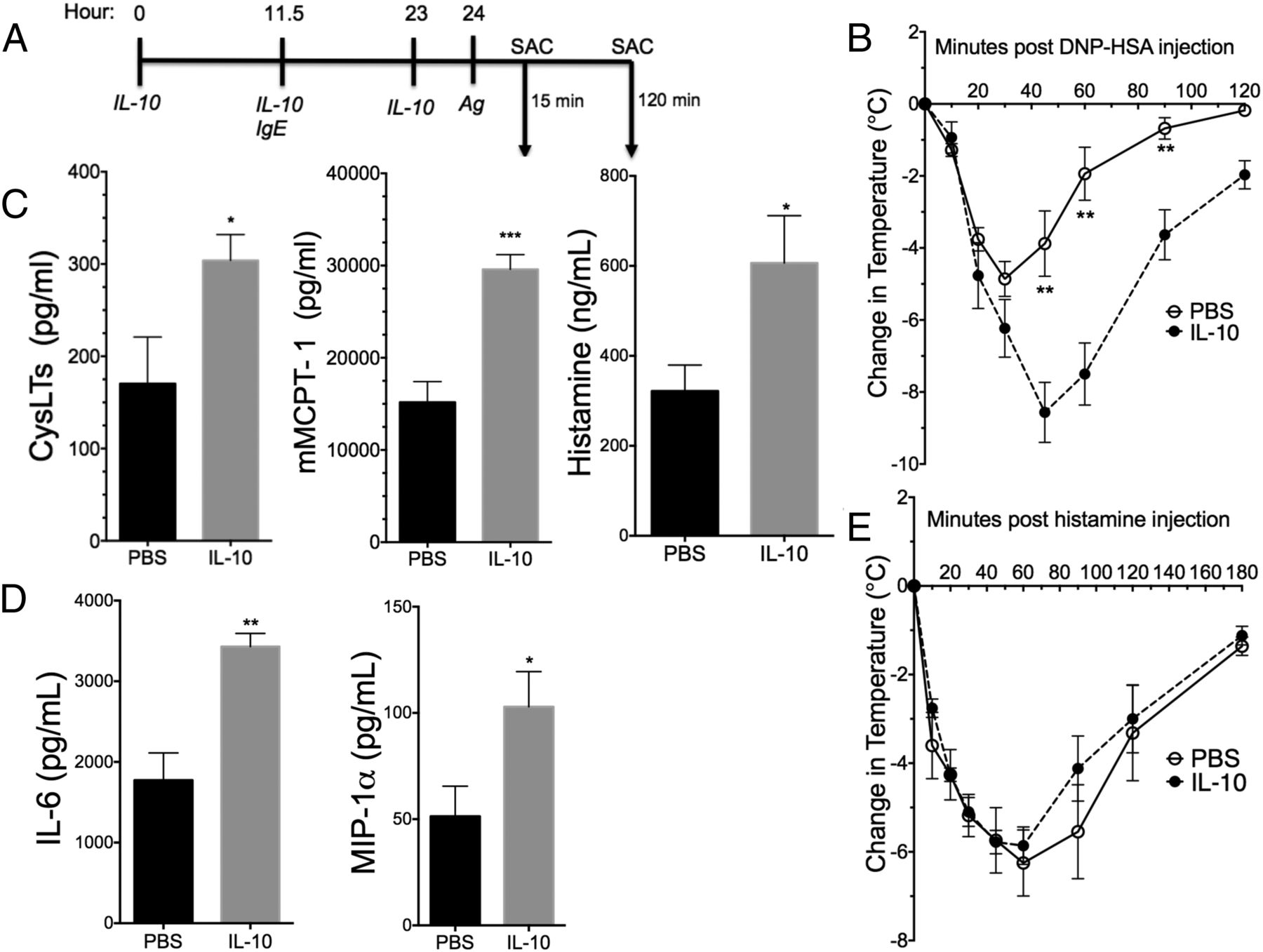 IL-10–Induced miR-155 Targets SOCS1 To Enhance IgE-Mediated