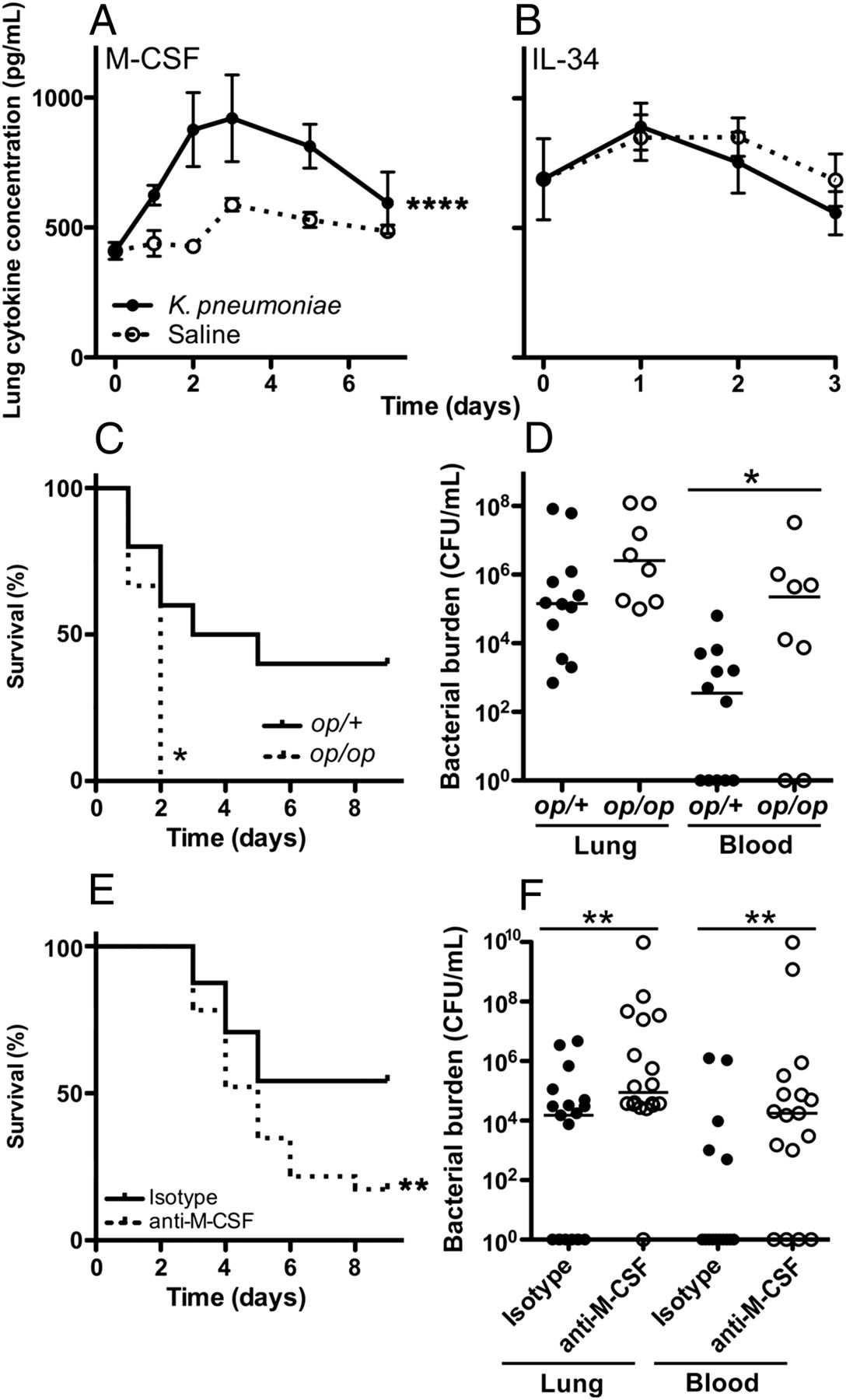 M csf mediates host defense during bacterial pneumonia by promoting download figure ccuart Choice Image