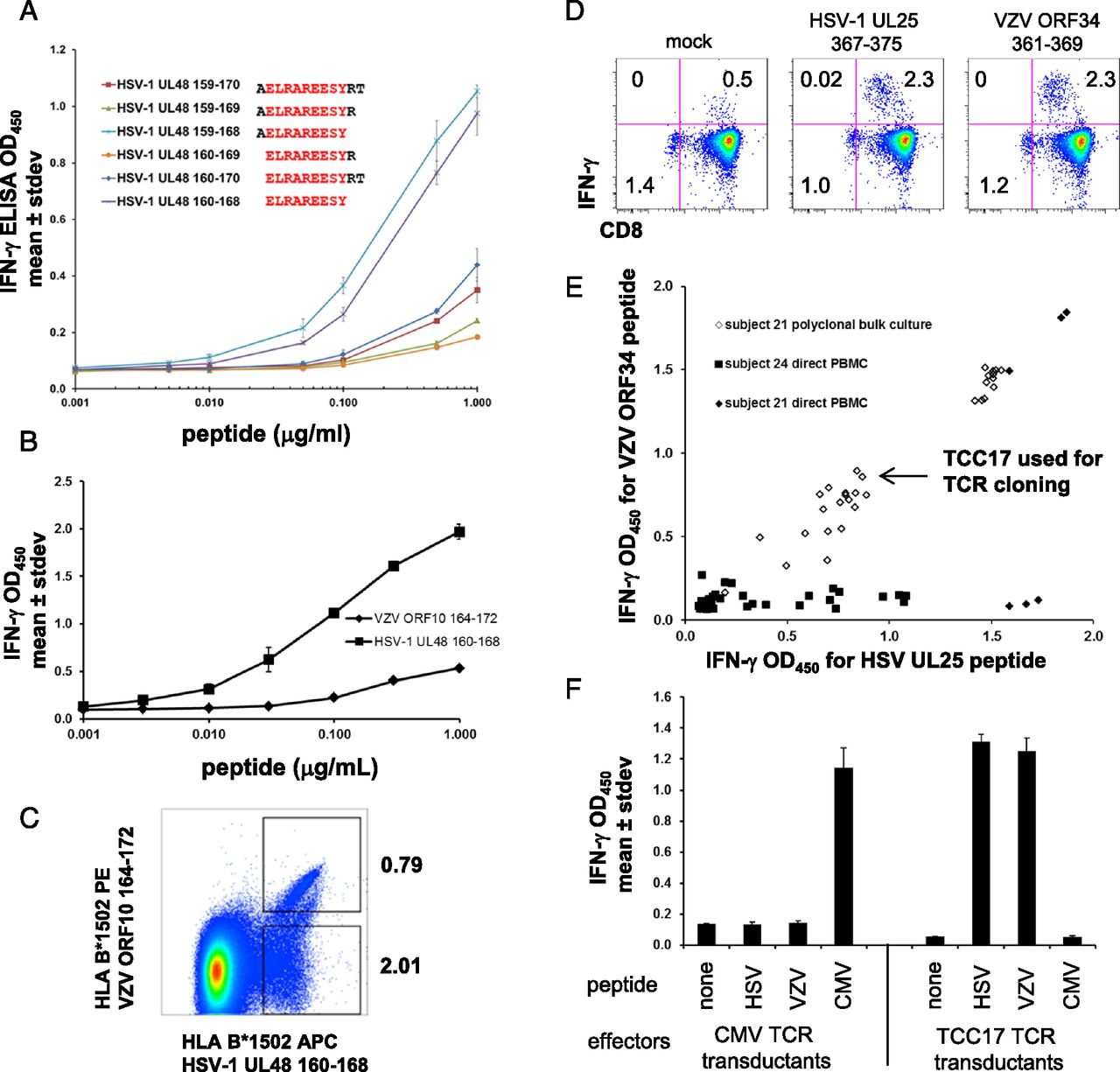 Extensive CD4 and CD8 T Cell Cross-Reactivity between