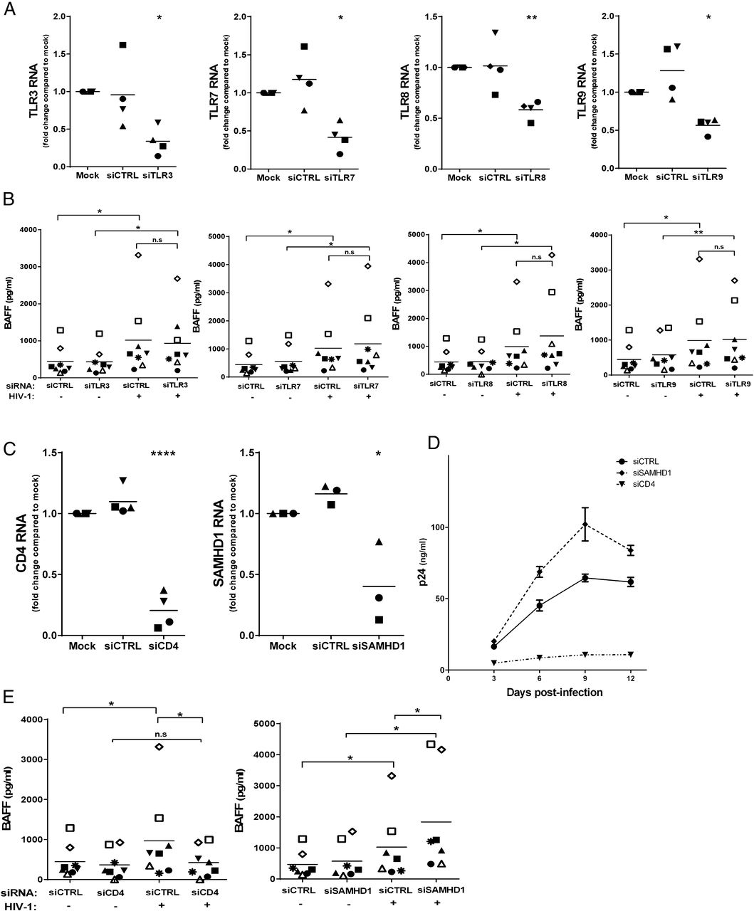 Hiv 1mediated Baff Secretion In Macrophages Does Not Require Kd Tools 2524 Short Circuit Detector Walmartcom Download Figure