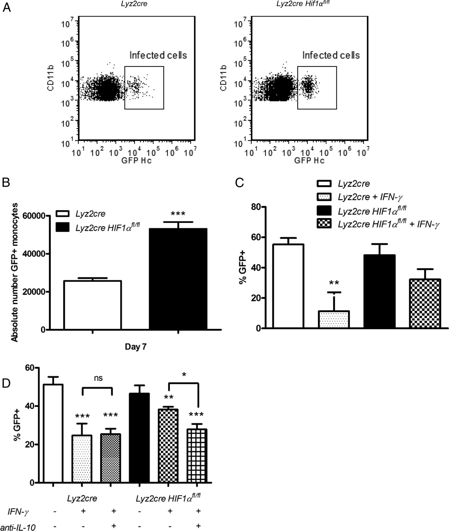 Inverse Correlation Between Il 10 And Hif 1 In Macrophages Infected Likewise Led Driver Circuit Diagram Besides White Download Figure