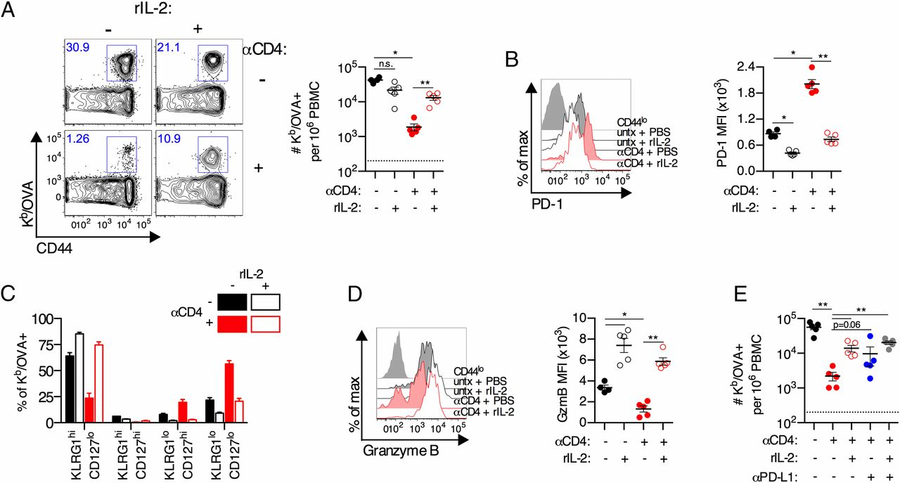 Immediate Dysfunction of Vaccine-Elicited CD8+ T Cells Primed in the