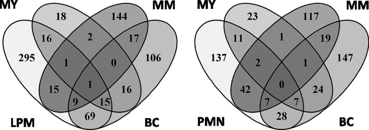 Changes In Gene Expression During G Csfinduced Emergency
