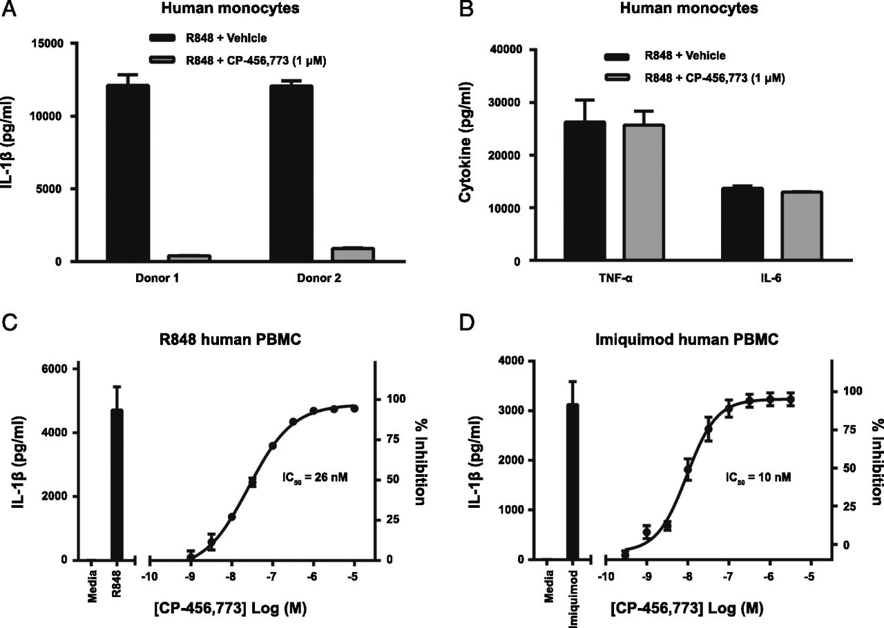 Efficacy and Pharmacology of the NLRP3 Inflammasome