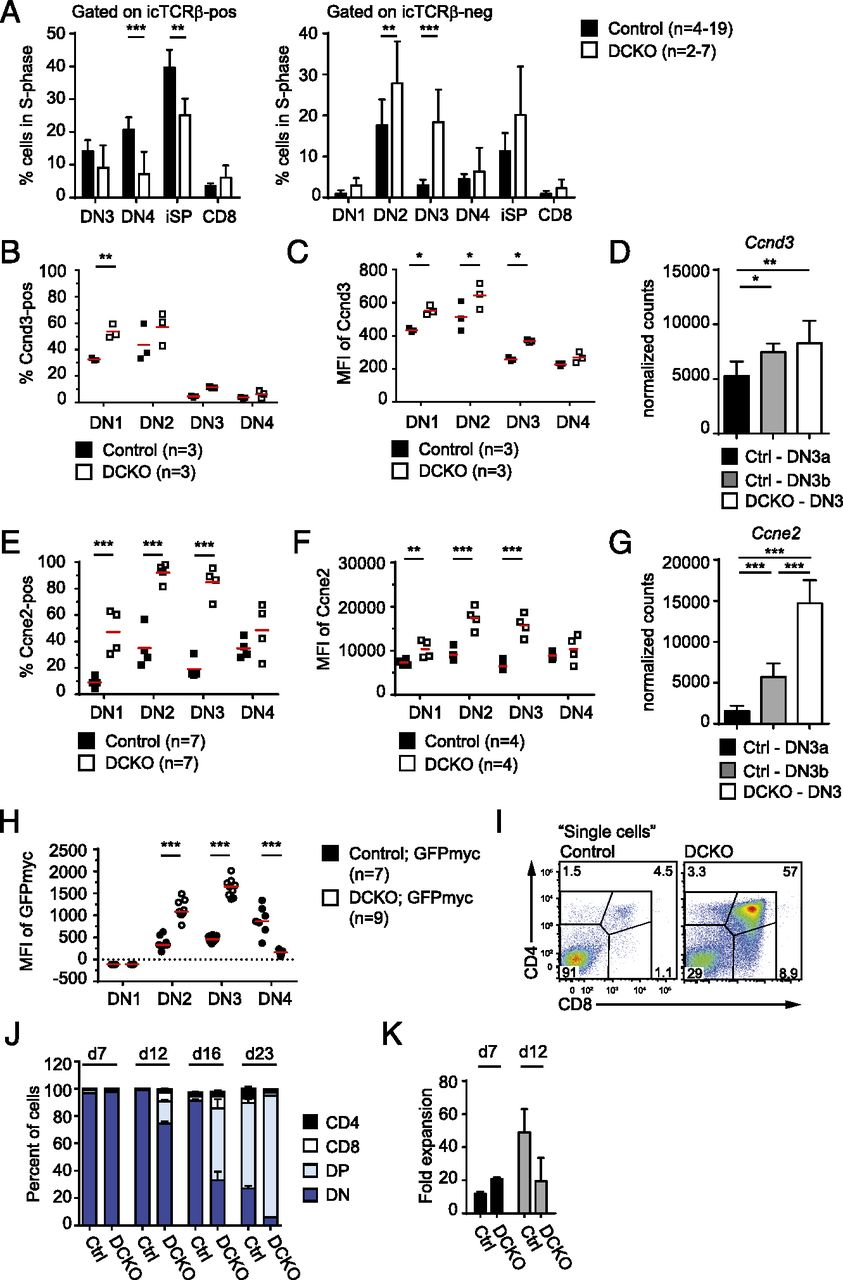 The Rna Binding Proteins Zfp36l1 And Zfp36l2 Enforce The Thymic β