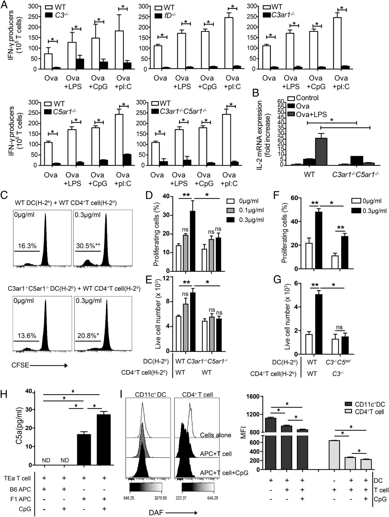 TLR Induced Murine Dendritic Cell DC Activation Requires DC