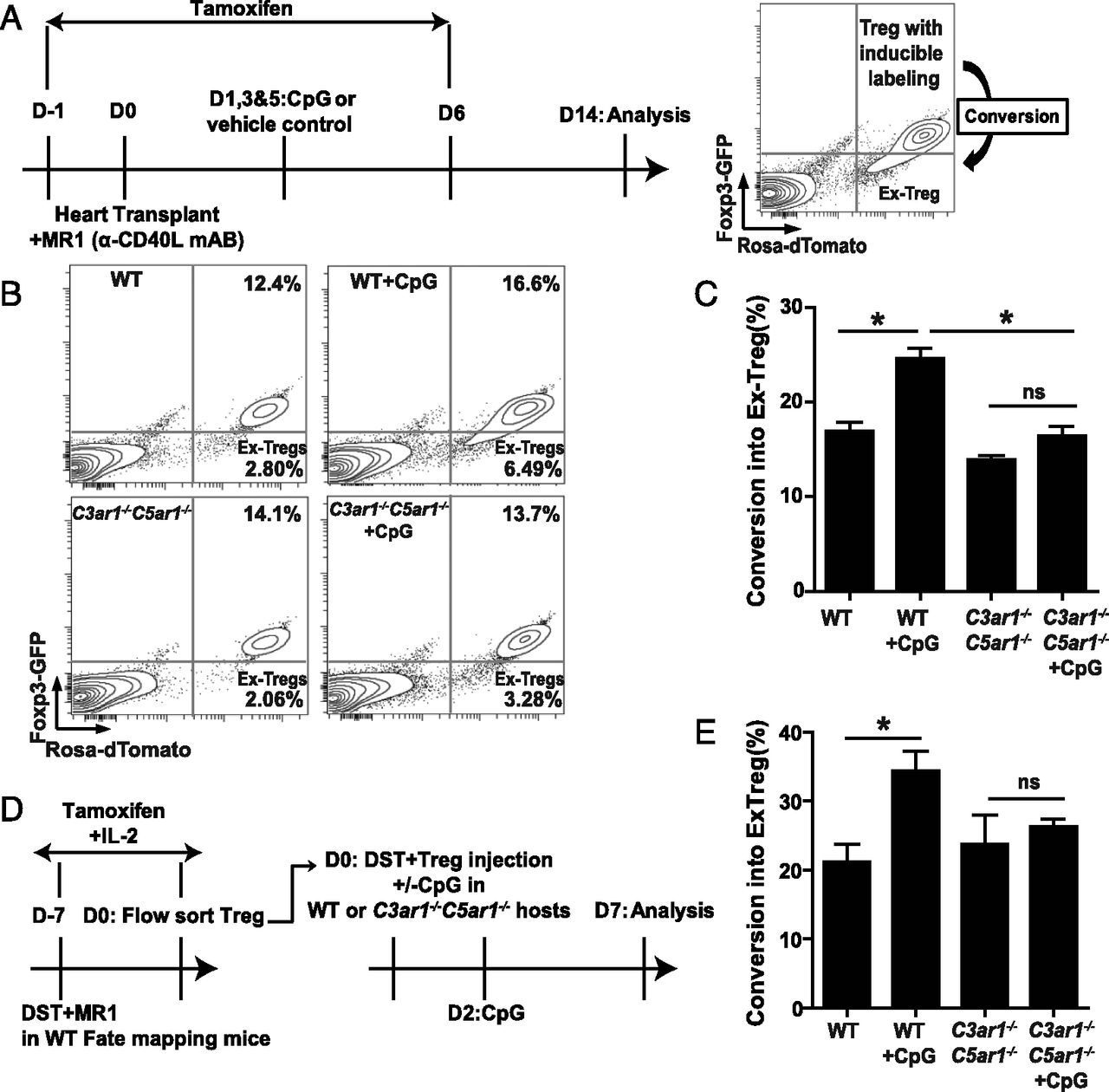 Figure 8 Tlr Induced Murine Dendritic Cell Dc Activation 2 S Complement Circuit Diagram Requires Intrinsic The Journal Of Immunology