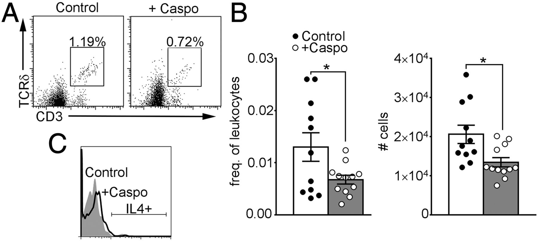 Caspofungin Increases Fungal Chitin and Eosinophil and γδ T