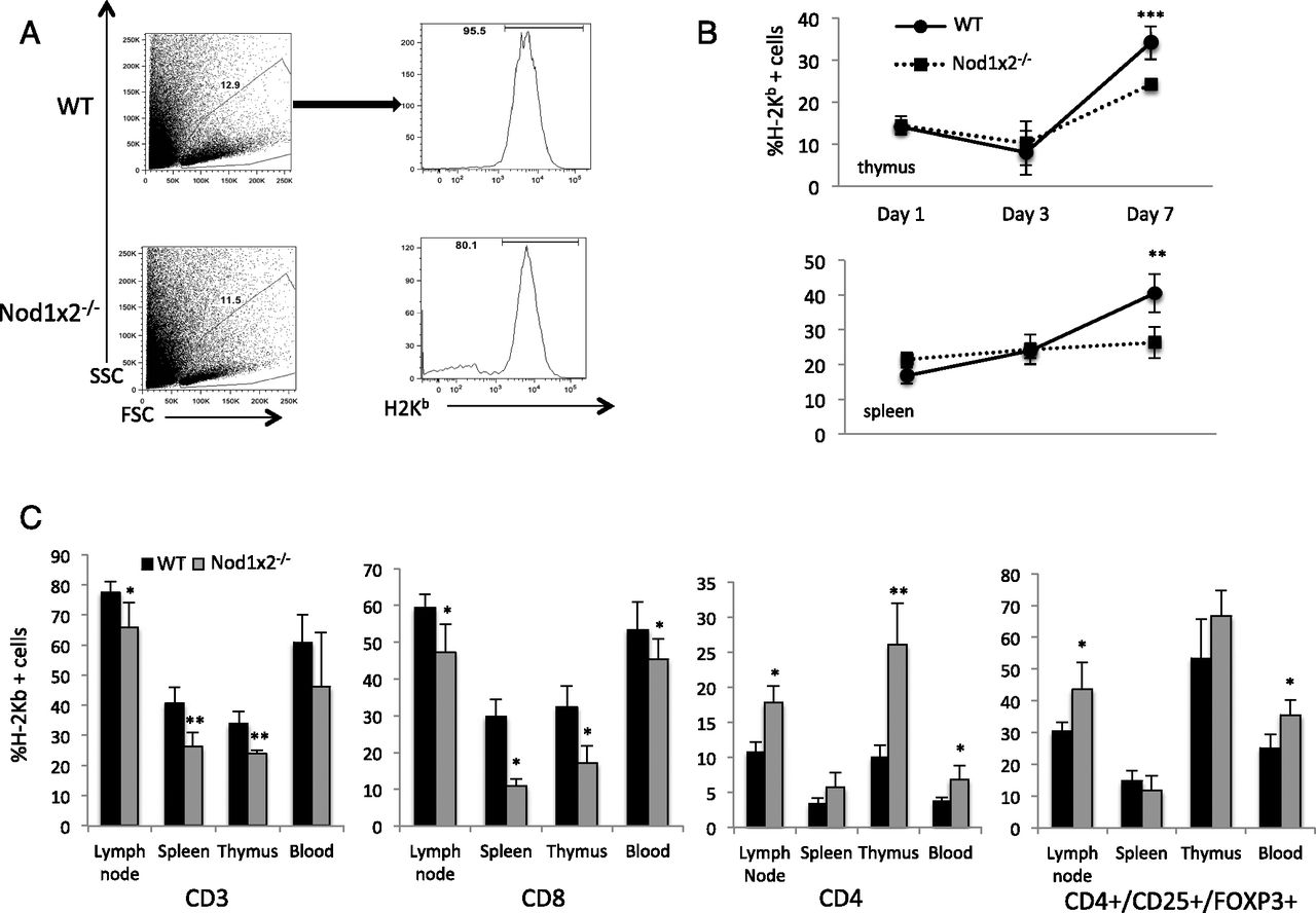 Figure 5 lack of both nucleotide binding oligomerization domain lack of both nucleotide binding oligomerization domaincontaining proteins 1 and 2 primes t cells for activation induced cell death the journal of ccuart Gallery