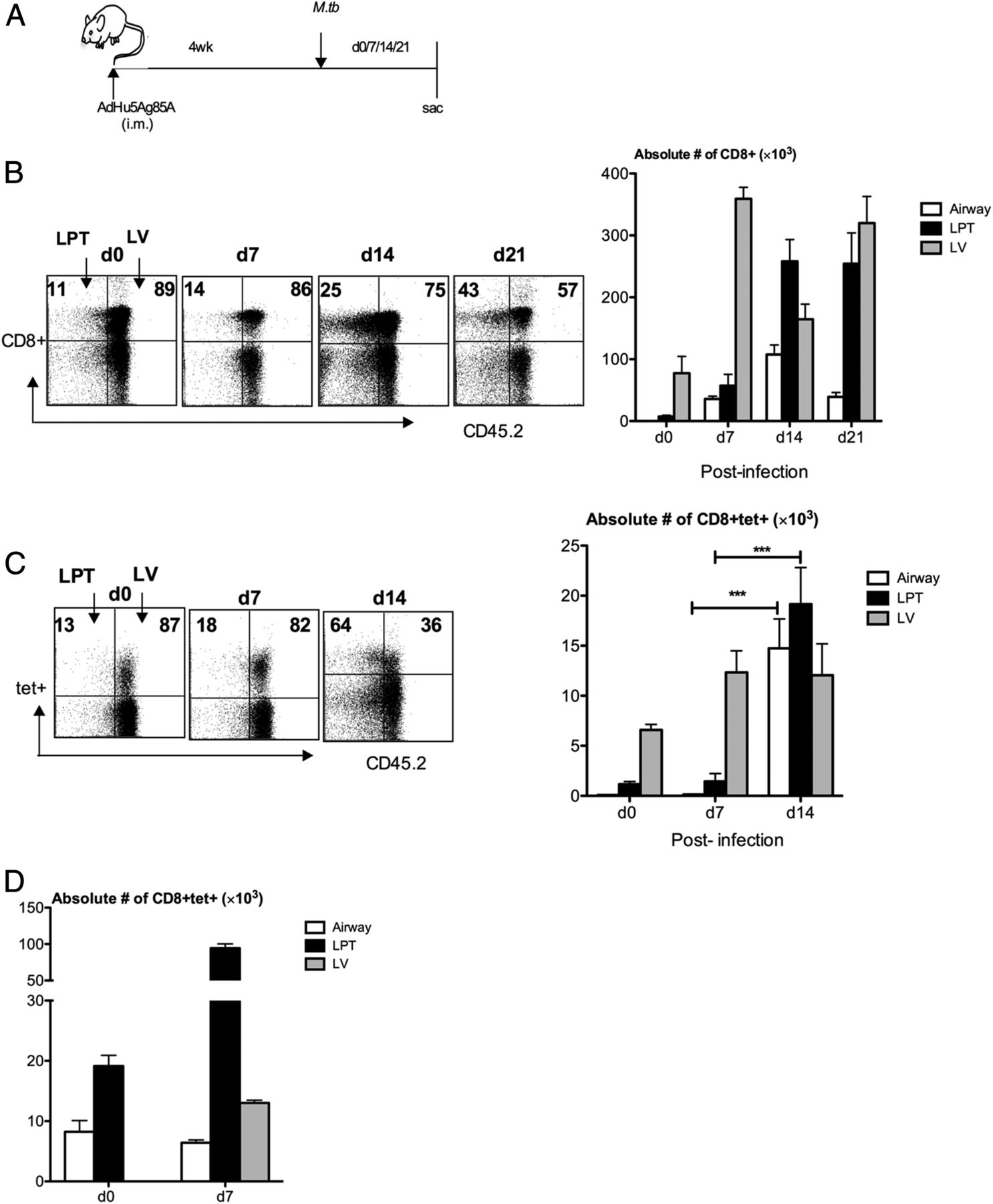 Cxcr3 Signaling Is Required For Restricted Homing Of Parenteral Series Circuits Whereby Components Share The Same Current Download Figure Open In New Tab