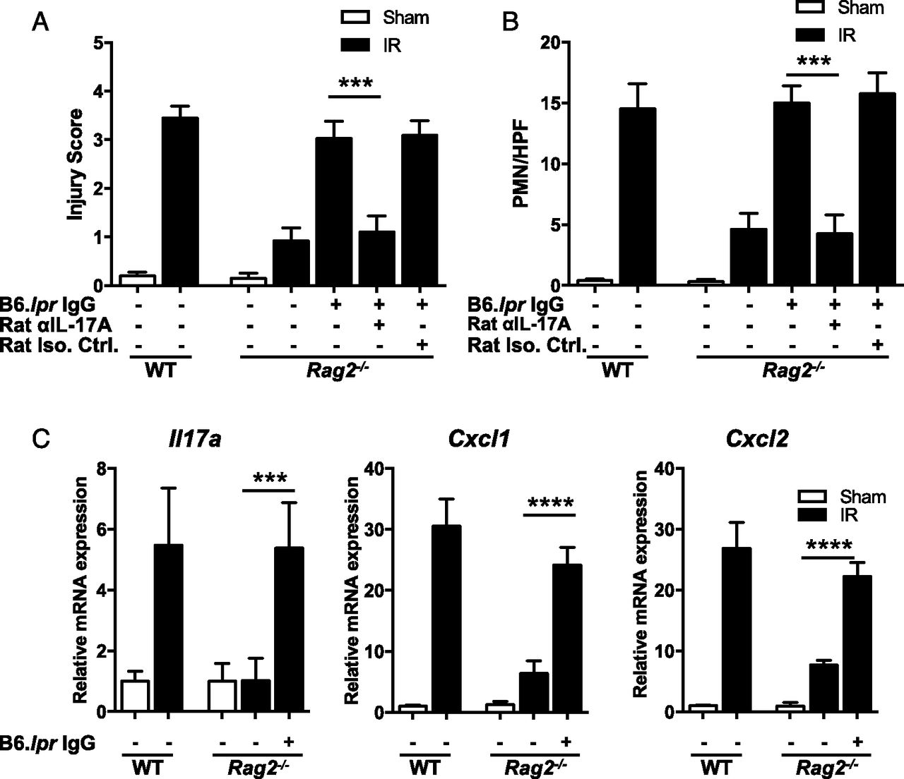 IL-17A Produced by Innate Lymphoid Cells Is Essential for Intestinal