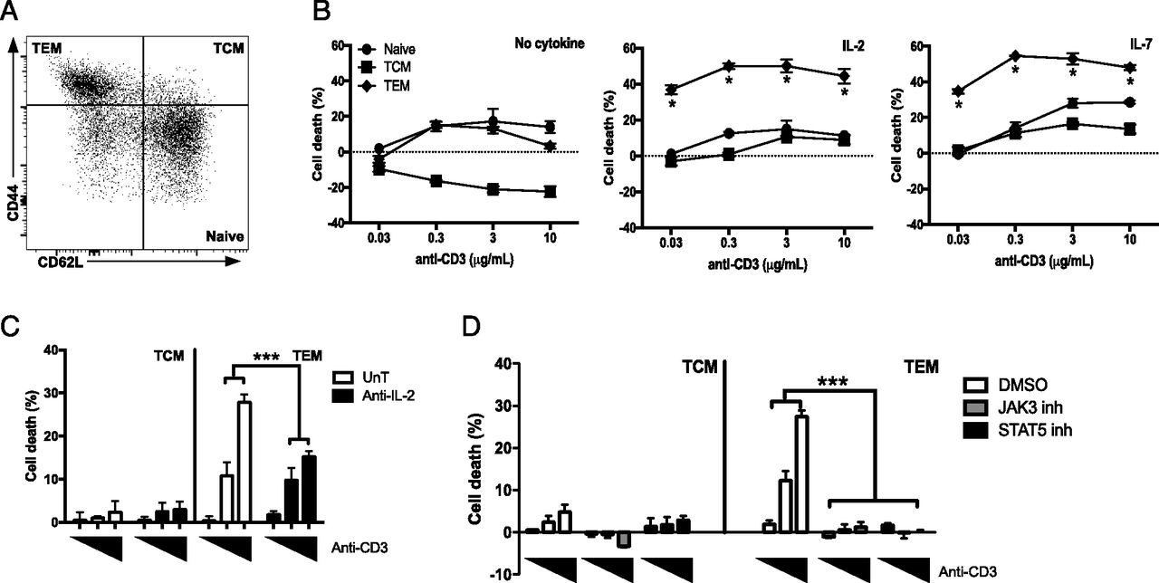 STAT5B: A Differential Regulator of the Life and Death of