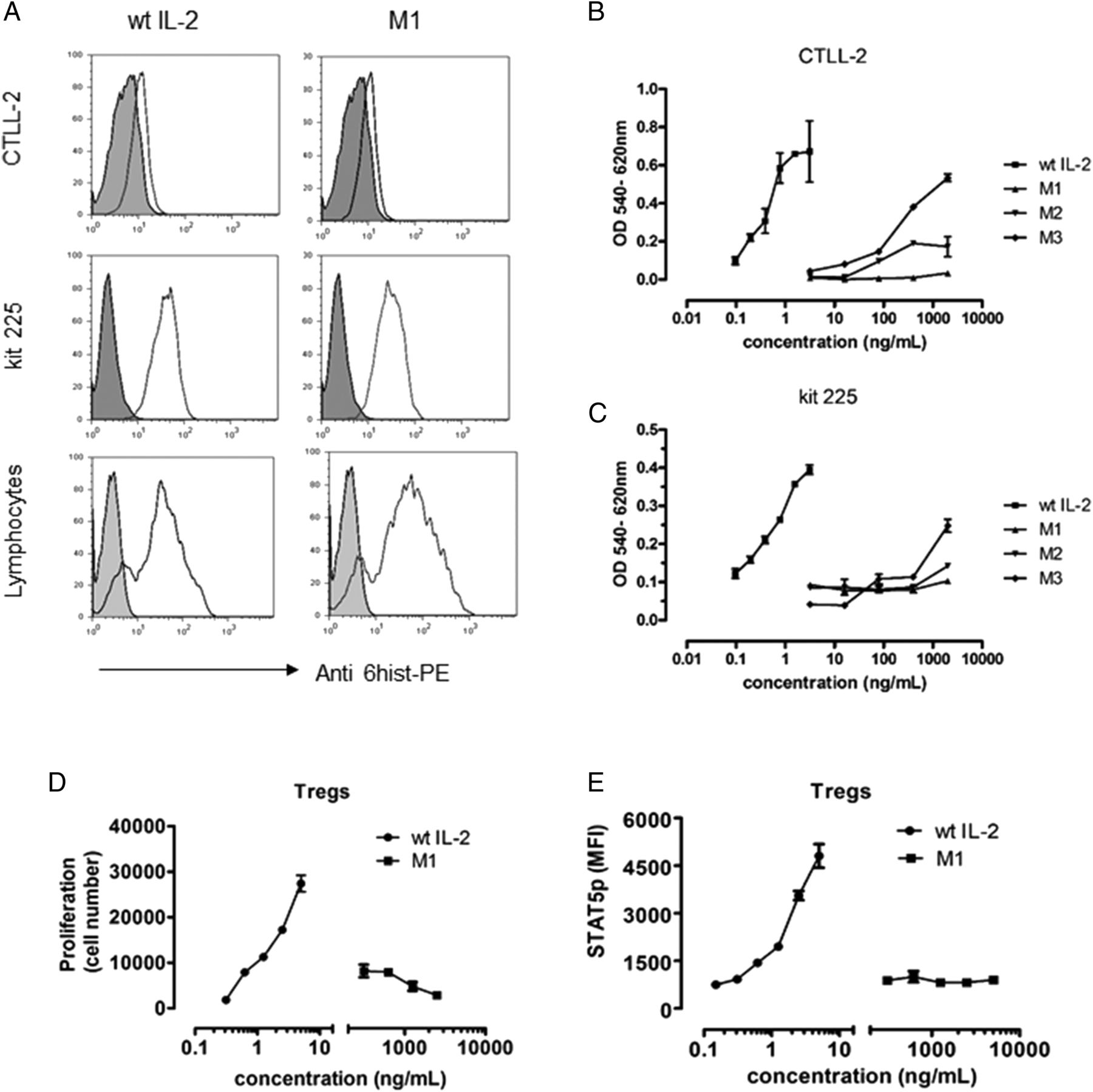 Blocking IL-2 Signal In Vivo with an IL-2 Antagonist Reduces Tumor