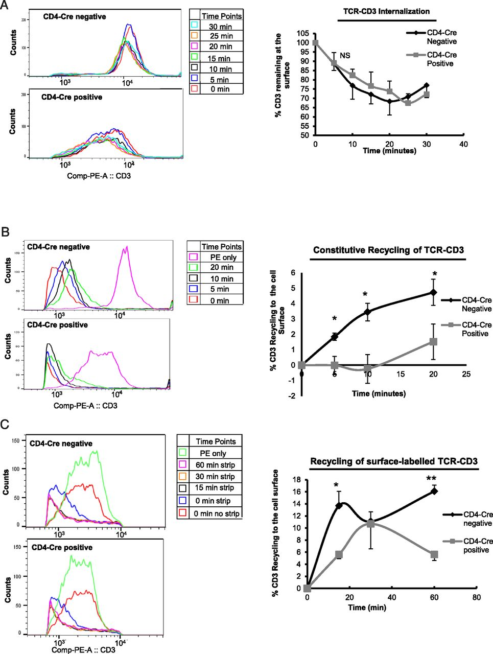 Role of the EHD Family of Endocytic Recycling Regulators for TCR ...