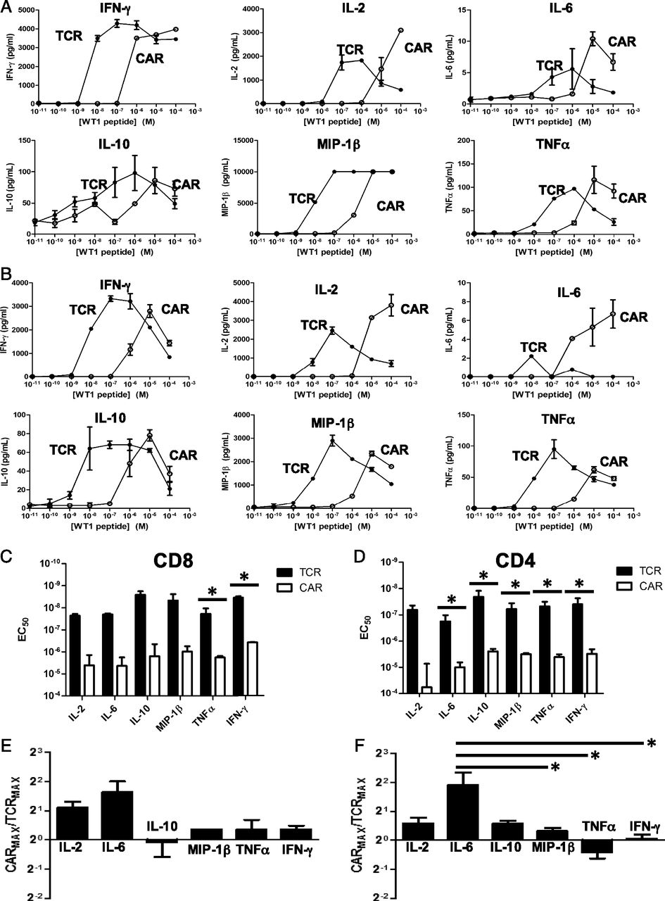 Comparison of T Cell Activities Mediated by Human TCRs and
