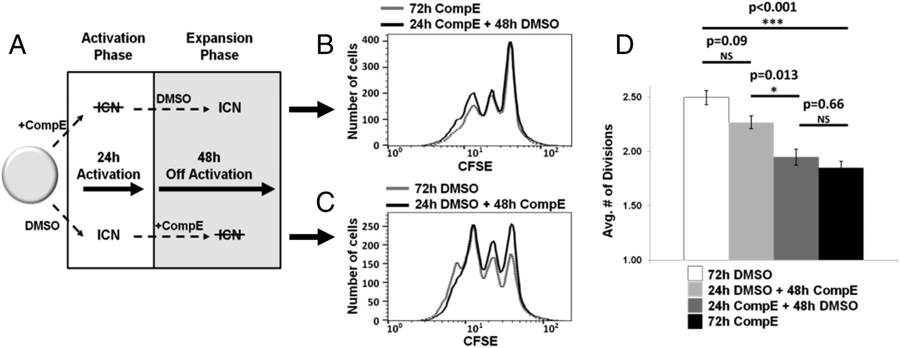 Novel TCR-Mediated Mechanisms of Notch Activation and